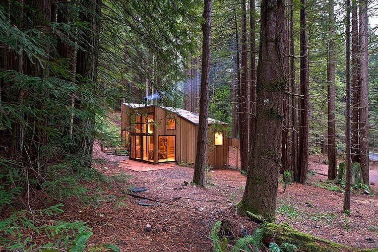 Sea Ranch Cabin By Frank Architects